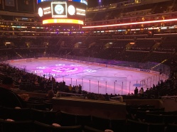 A hockey game!